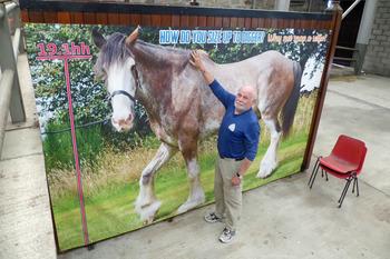 World Horse Trust for NL 8 2
