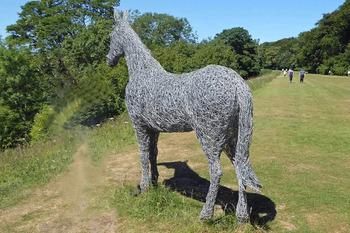 England Rievaulx Terrace horse for NL 1 2